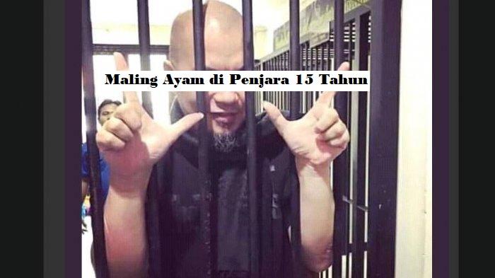 Maling Ayam di Penjara 15 Tahun